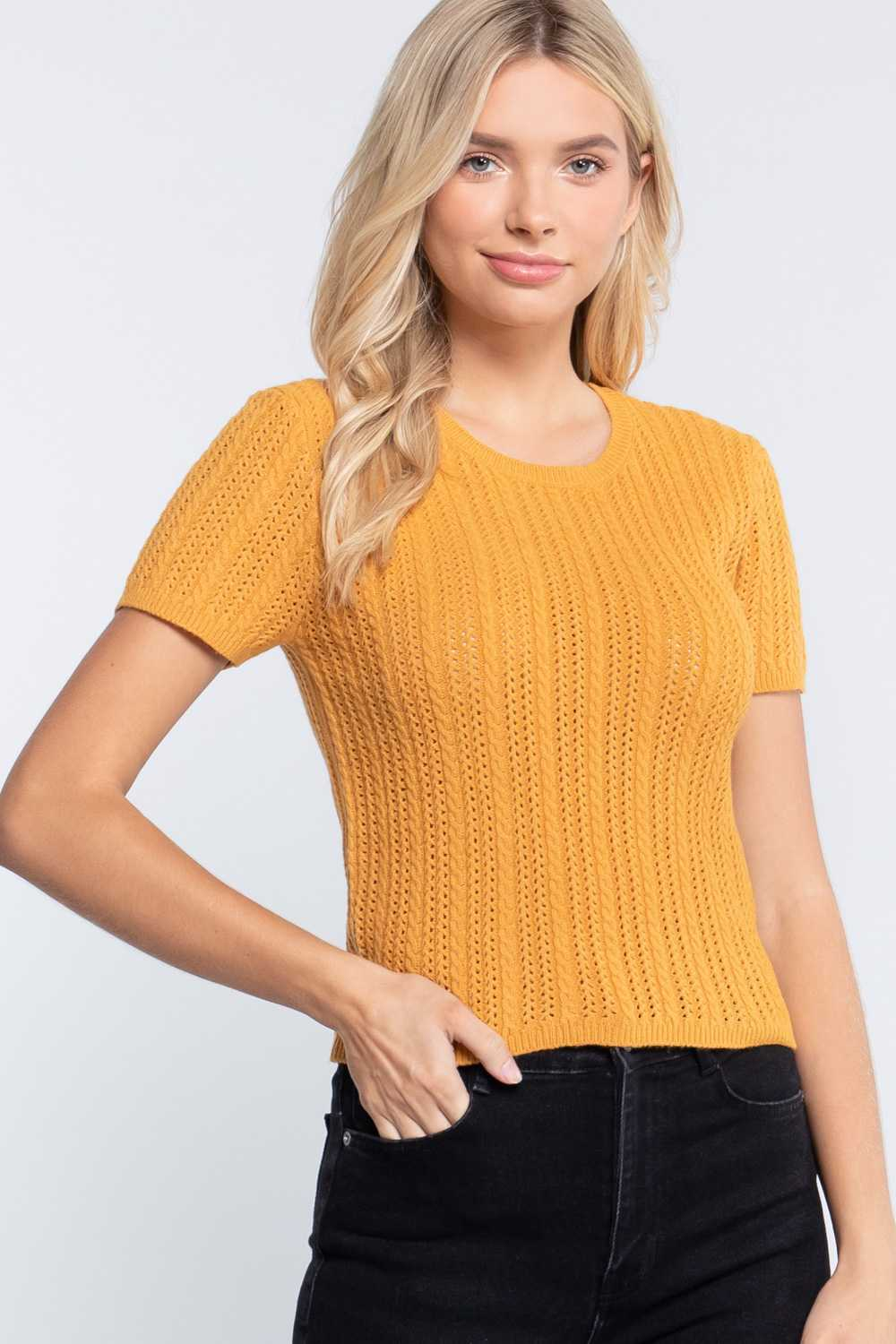 Solid Short Sleeve Cable Knit Top
